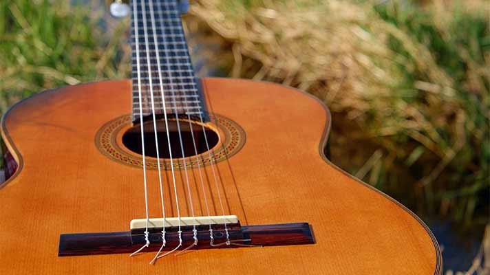 草原にギター